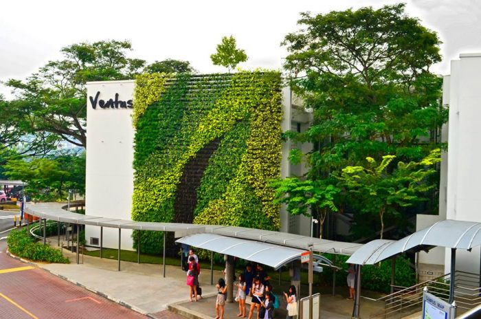 Green Wall and Rooftop Garden